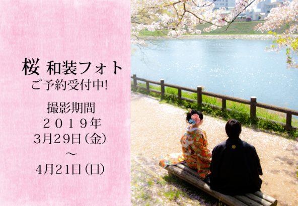 岡山後楽園春の桜前撮りご予約中2019